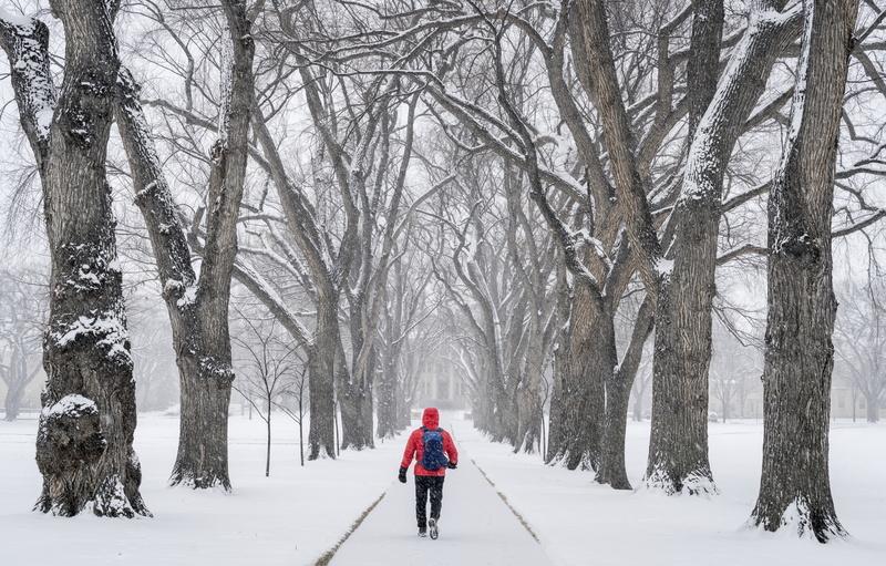snow-storm-impact